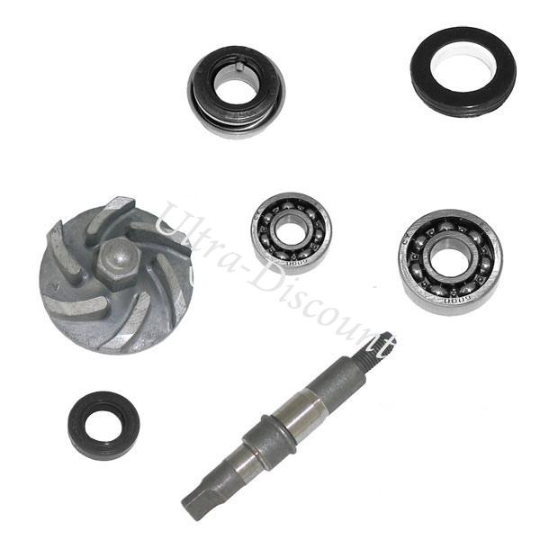 Water Pump Maintenance Kit for ATV BASHAN Quad 200cc (BS200S-7 ...