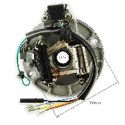 Stock Ignition Assy for Dirt Bike 50 125cc type 3