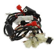 Wire Harness for ATV Bashan Quad 200cc (BS200S-3)