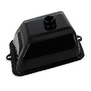 Iron Fuel Tank for ATV Bashan 200 BS200S-3