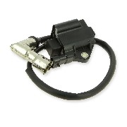 Ignition Coil for ATV Bashan Quad 250cc (BS250AS-43)