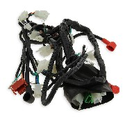 Wire Harness for ATV Bashan Quad 250cc (BS250S-11B)