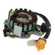 Complete Stator for ATV Bashan Quad 300cc (BS300S-18)