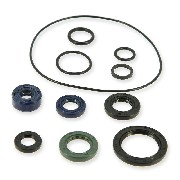 Oil Gasket Set 125cc for PBR Skyteam EURO4