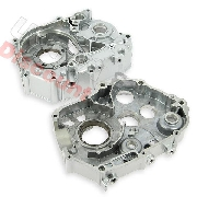 Crankcase Housing 125cc for Trex Skyteam