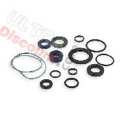 Oil Gasket Set for engines 50cc for PBR Skyteam