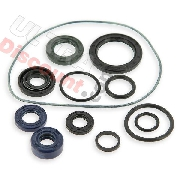 Oil Gasket Set for engines 125cc for Bubbly Skyteam