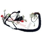 Wire Harness 36610-16H10 for Monkey LE MANS 50cc - 125cc (Before 10-2015)
