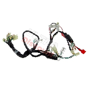 Wire Harness 36610-16H02 for Monkey 50cc - 125cc (après 10-2015)