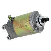 Starter Motor for ATV Shineray Quad 250ST-9C