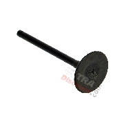 Intake Valve for ATV Shineray Quad 250cc ST-9C (Engine 172MM)