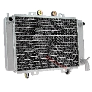 Radiator for ATV Shineray Racing Quad 250cc ST-9C