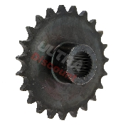 23 Tooth Front Sprocket for ATV Shineray Quad 250cc ST-9C