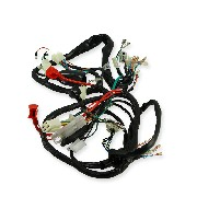 Wire Harness for Skyteam T-rex 50-125cc (after 08-2014)