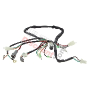 Wire Harness for Yamaha PW50