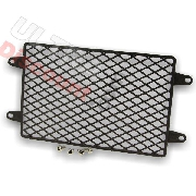 Cooling Radiator Guard for ATV Shineray Quad 250STIXE - ST-9E