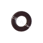 Oil Seal for Chinese Motor Scooter (17x30x8)