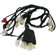 Wire Harness for ATV Bashan Quad 250cc (BS250S-11)