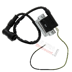 Ignition Coil + Noise Filter for Dirt Bike type 2
