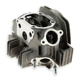 Cylinder Head for Dirt Bike 125cc 1P54FMI