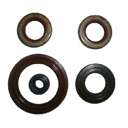 Set of 5 Oil Seals for Polini GP3