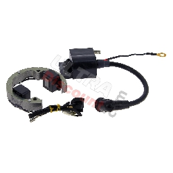 Ignition for Pocket Bike Polini GP3 (liquid-cooled)