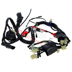 Wire Harness for ATV Shineray Quad 250cc STXE