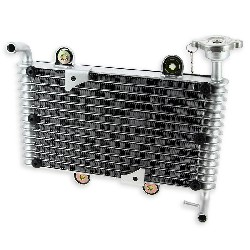 Radiator for Bashan Parts ATV 250cc BS250S11