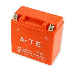 Battery for ATV Bashan Quad 250cc (BS250AS-43)