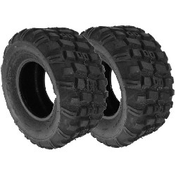 Pair of Rear Tires for ATV Bashan Quad 250cc (BS250S-11) - 250-55-9