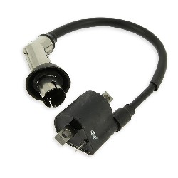 Ignition Coil for ATV Bashan Quad 300cc (BS300S-18A)