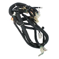 Wire Harness for ATV Bashan Quad 300cc (BS300S-18)
