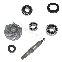 Water Pump Maintenance Kit for ATV Bashan Quad 250cc (BS250S-11)