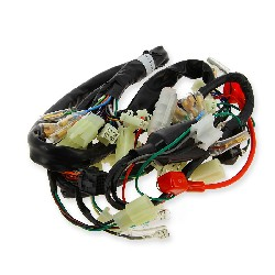 Wire Harness for Dax Skyteam Skymax 50cc EURO4