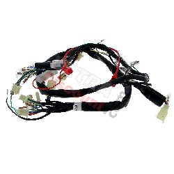 Wire Harness 36610-17H02 for Skymax 50cc 125cc (after 10-2015)