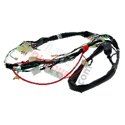 Wire Harness 36610-17H01 for Skymax 50cc 125cc (before 10-2015)