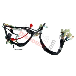 Wire Harness 36610-16H00 for Monkey 50cc - 125cc (Before 10-2015)