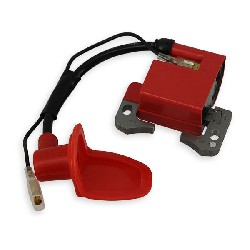 Stock Ignition for Pocket ATV Spare Parts (RED)