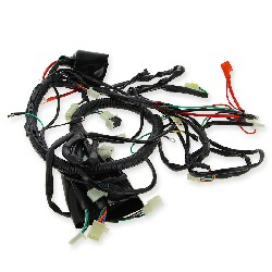Wire Harness for ATV Spy Racing 250 F1