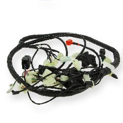 Wire Harness for ATV Spy Racing 250F3