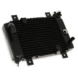 Radiator for ATV Quad 200cc (liquid-cooled)