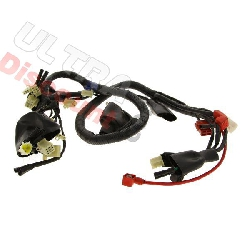 Wire Harness for ATV Shineray Quad 250ST-9C