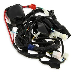 Wire Harness for ATV Shineray Quad 150cc (XY150STE)