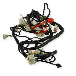 Wire Harness for Skyteam T-rex 50-125cc (before 08-2014)