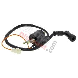 Ignition Coil for PW80