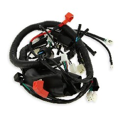Wire Harness for ATV Shineray Quad 250cc ST-9E
