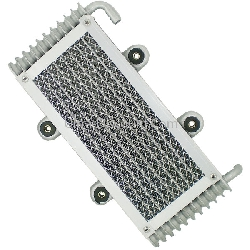 Oil Cooler for ATV Bashan Quad 300cc (BS300S-18)