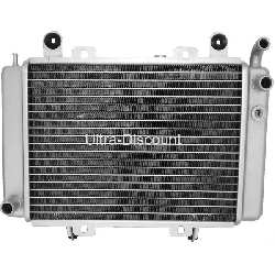 Radiator for ATV Shineray Quad 300cc ST-5E